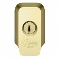 ASEC High Security Rim Cylinder Pull With Cylinder Polished Brass