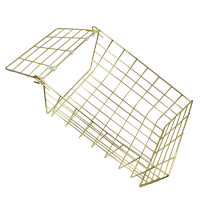 ASEC 62S Small Letter Cage Brass